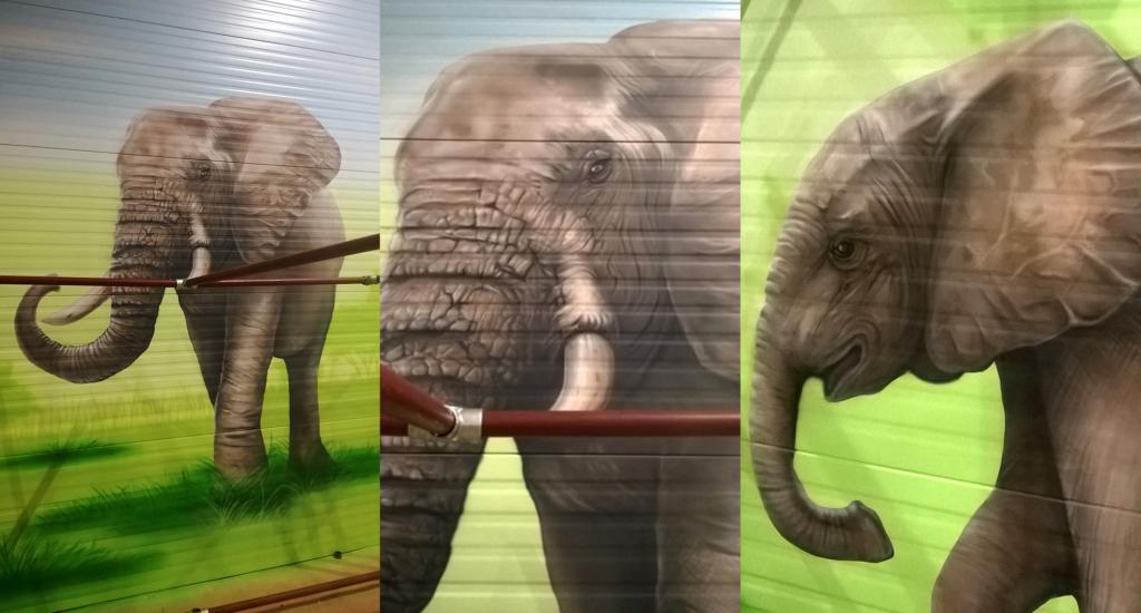 słoń, malowanie natryskowe, mural